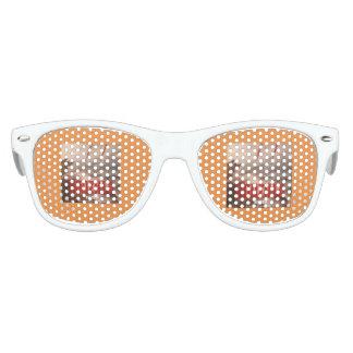 craycray Harrison Sunglasses