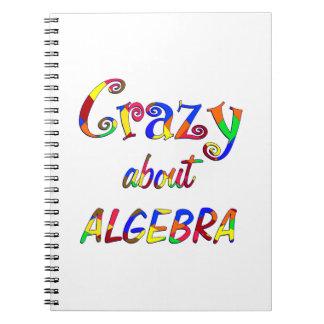 Crazy about Algebra Journal