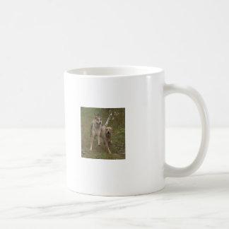 Crazy about Cattle Dogs! Basic White Mug