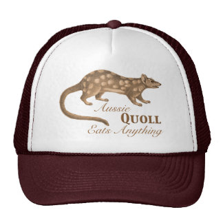 Crazy Aussie Quoll Eats Anything Cap