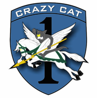 Crazy Cat Aviation 1 Photo Sculpture Key Ring