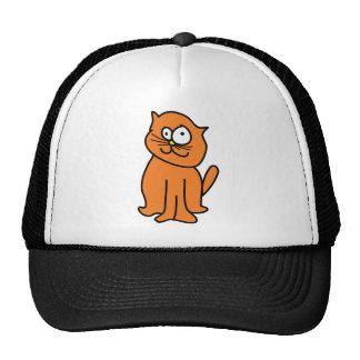 Crazy cat hats