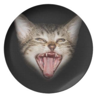 Crazy Cat Kitten Face Plates