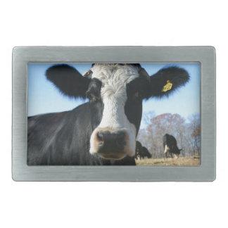 Crazy Cow Rectangular Belt Buckles