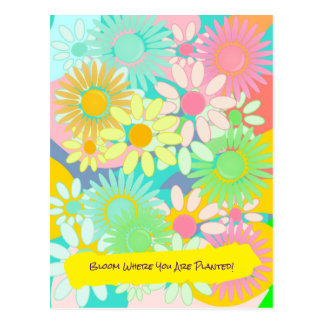 Crazy Daisy Bloom where you are planted postcard