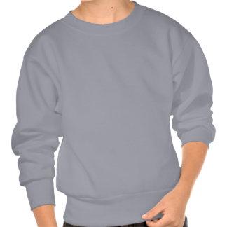 crazy dino pull over sweatshirt