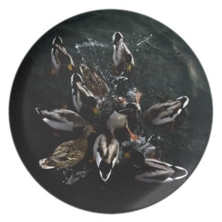crazy ducks party plate