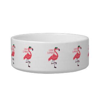 Crazy flamingo bowl