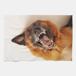 Crazy funny dog tea towel