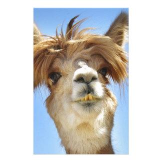 Crazy Hair Alpaca Stationery Design