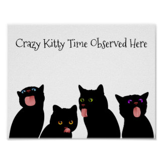 Crazy Kitty Time Observed Here Poster