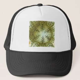 cream ball with ferns trucker hat