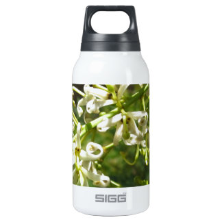 Cream on green 0.3L insulated SIGG thermos water bottle