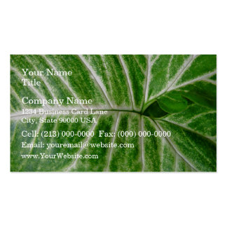Cream patterns on green leaf business cards