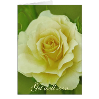 Cream Rose and meaning Greeting Card