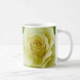 Cream Rose and meaning Mug