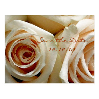 Cream Rose Bouquet - Save the Date Card Post Cards