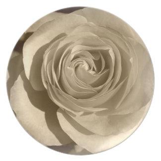 Cream Rose Dinner Plates