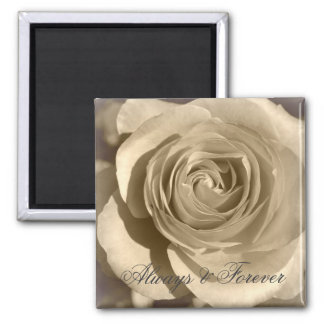 Cream Rose Forever and Always Square Magnet