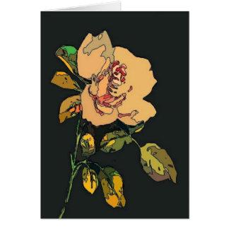 cream rose on black card