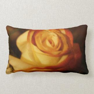 Cream Rose Photograph Lumbar Pillow