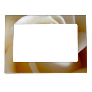 Cream Rose Wedding Photo Frame Magnets