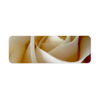 Cream Rose Wedding Photo Return Address Label