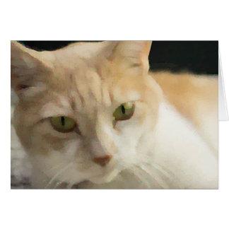 Cream Tabby Cat Greeting Card Blank Inside