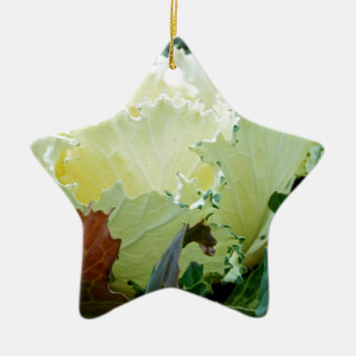 Creamy Fracas Ceramic Star Decoration