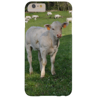 Creamy white charolais calf barely there iPhone 6 plus case