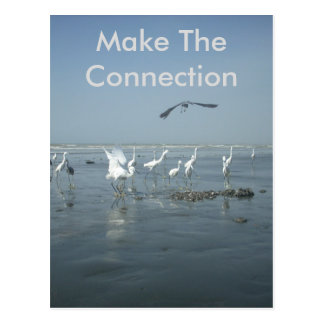Create Your Own Make The Connection Postcard