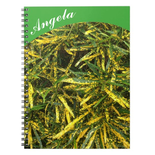Create your own notebook - green