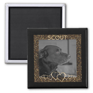 Create Your Own | Personalized Pet Photo Keepsake Magnet