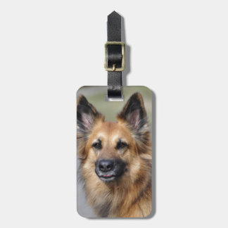 Create your own pet photo luggage tag