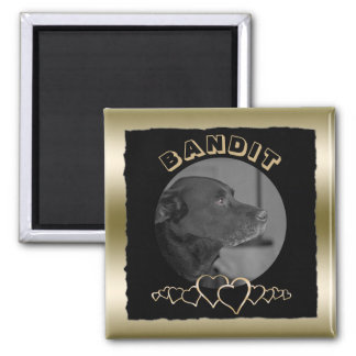 Create Your Own Photo Gold | Custom Pet Keepsake Magnet