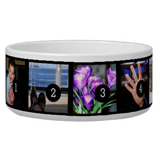 Create Your Own Photo Instagram 5 images! Dog Food Bowl