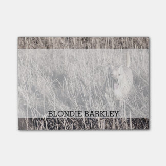 Create Your Own Photo Pet Dog | Personalized Name Post-it® Notes