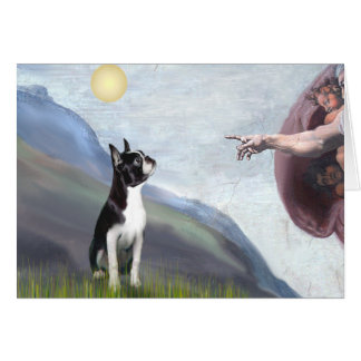 Creation of the Boston Terrier 3 Greeting Card