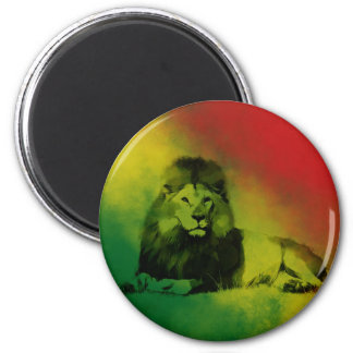 Creative Youth Lion Magnet