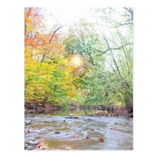 Creek - Fall Postcard