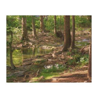 Creek in Texas woods Wood Print