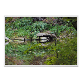 Creek Reflections Photo Poster