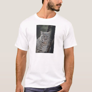 Creeping Bobcat T-Shirt