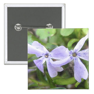 Creeping Phlox Flowers Pinback Button