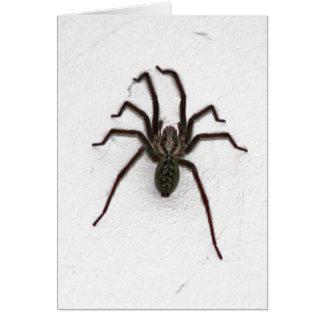 Creepy Spider Card