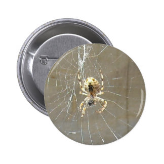 Creepy Spider Web 6 Cm Round Badge