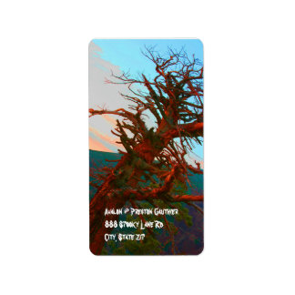 Creepy Tree Halloween Return Address Labels
