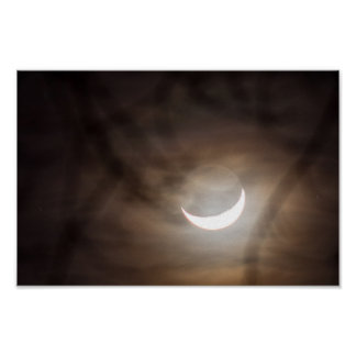 Crescent Moon and Tree Branches Poster