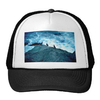 Crested Auklets Trucker Hat