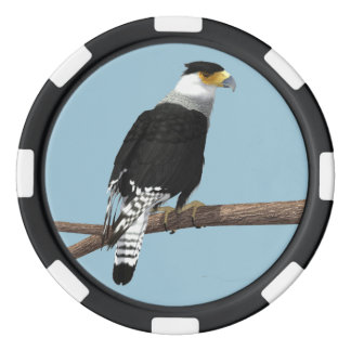 Crested Caracara Clay Poker Chip